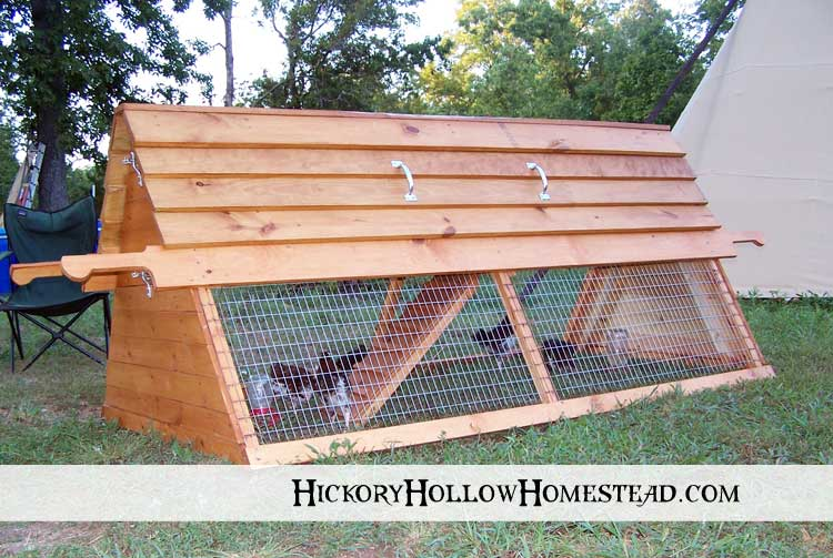 chicken tractor hickory hollow homestead